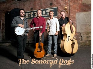 Sonoran Dogs - March Madness Concert Series @ The Orpheum Lounge | Flagstaff | Arizona | United States